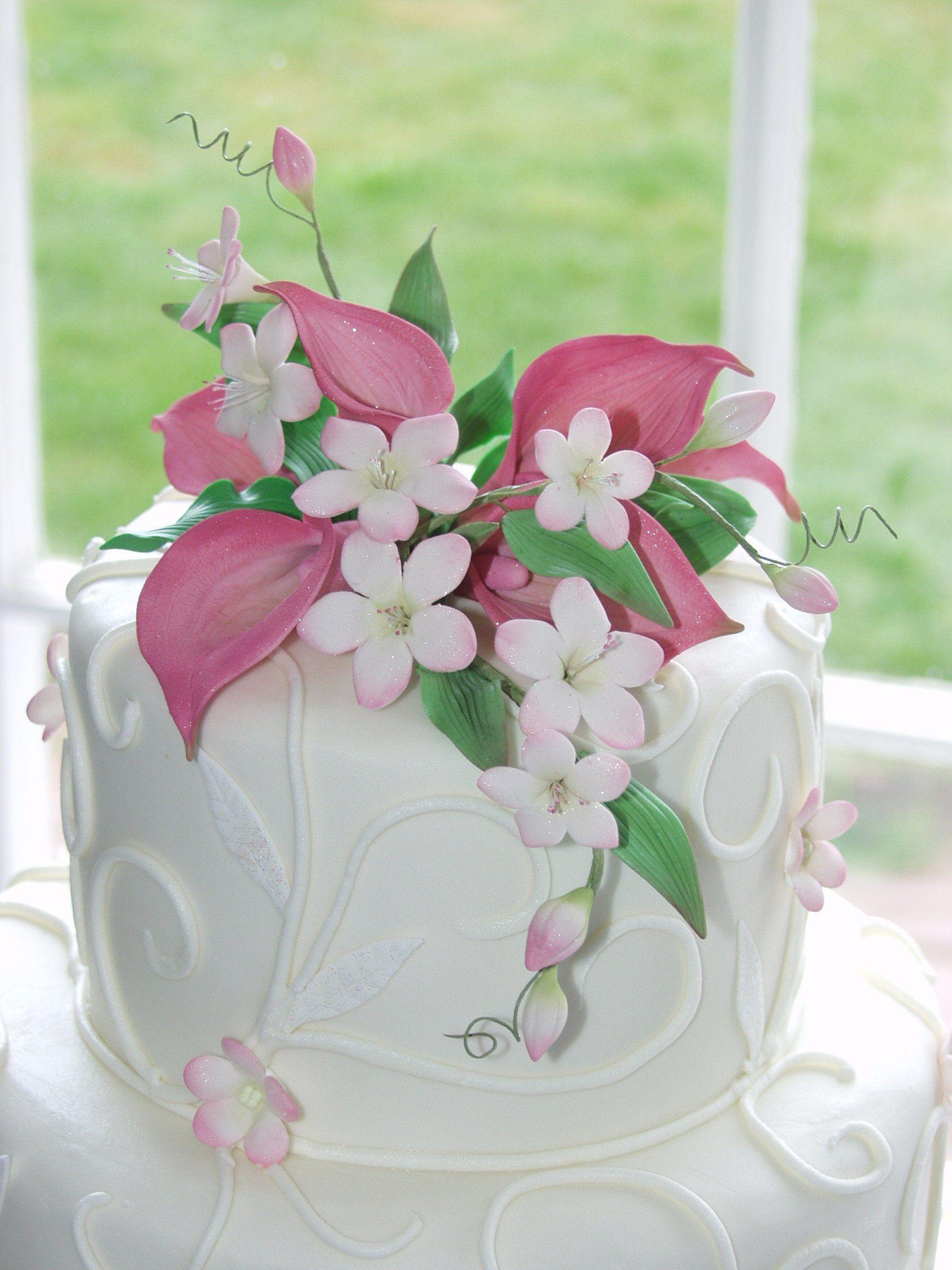 http://www.weddingwire.com/biz/dianne-rockwell-the-cake-lady ...