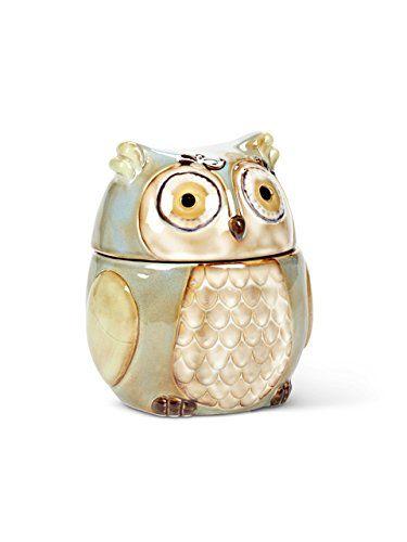 "6"" Stoneware Turquoise Owl Kitchen Food Storage Canister Cookie Biscotti Jar"