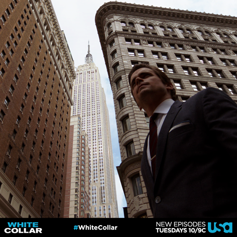 Empire State of Mind #collarcountdown