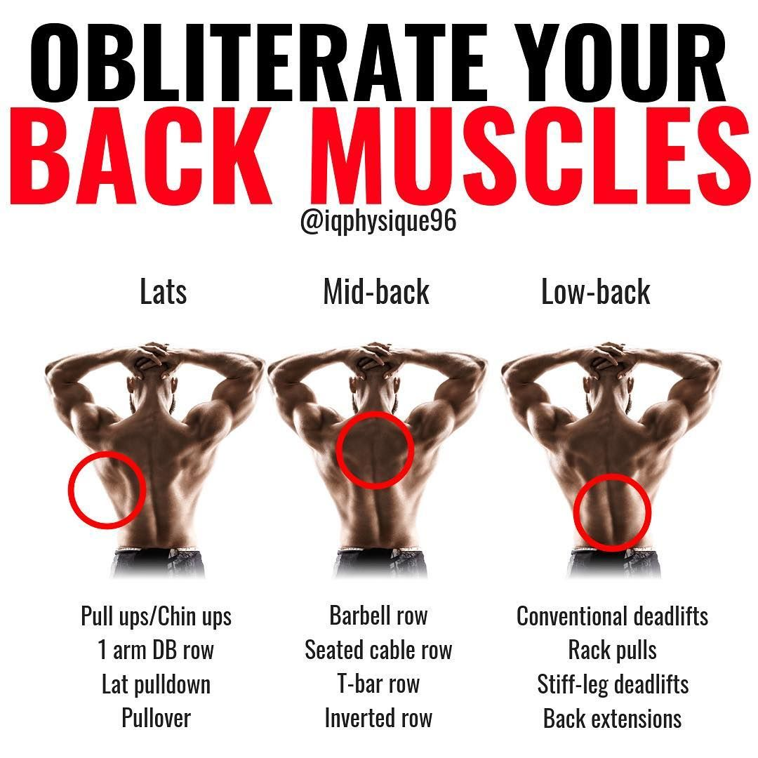 The 4 Week Dumbbell Workout Plan Part 1 Chest And Back