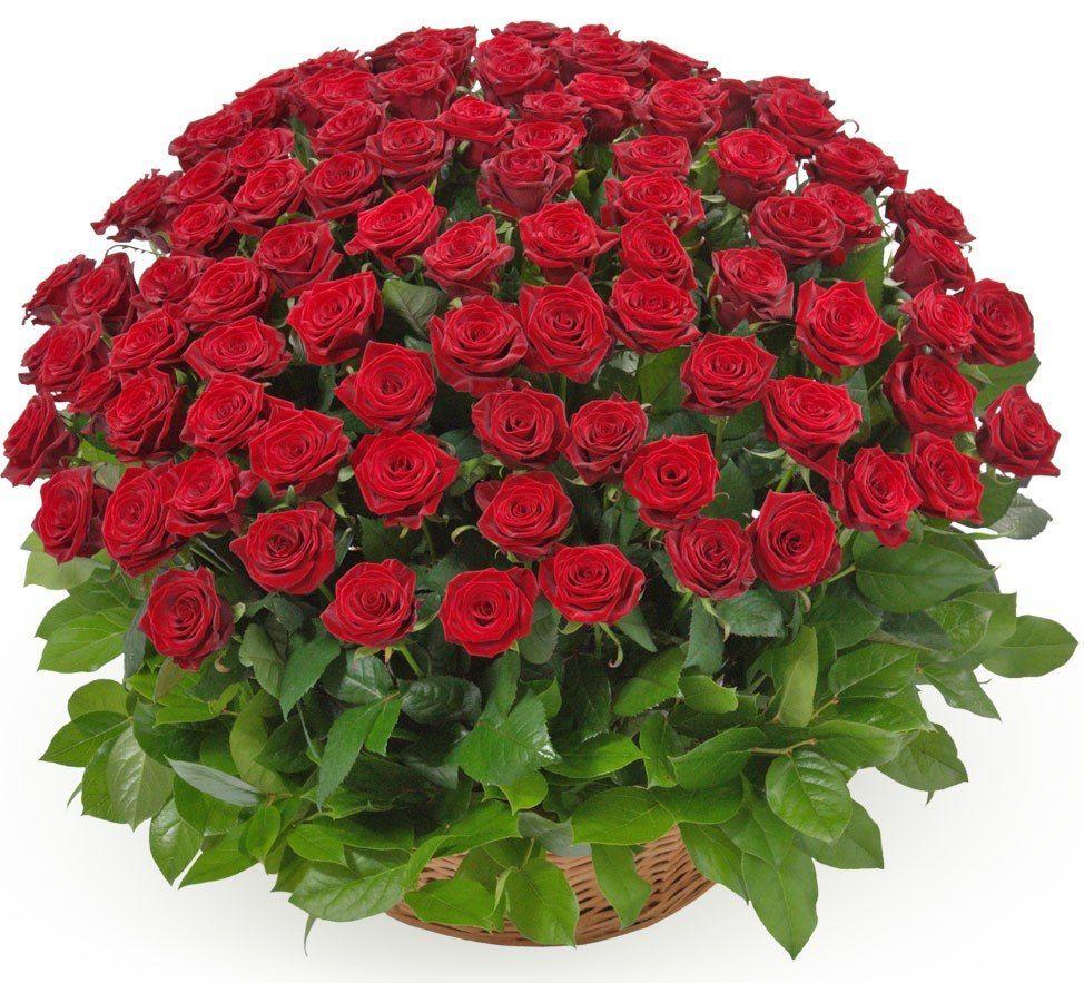 Букет из Композиции Корзина из 101 розы , цены от Flor2u.ru
