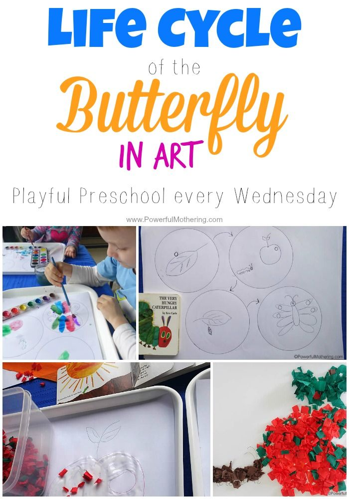 Easy art exploration featuring the hungry caterpillar in a butterfly life cycle study! Playful preschool every Wednesday.
