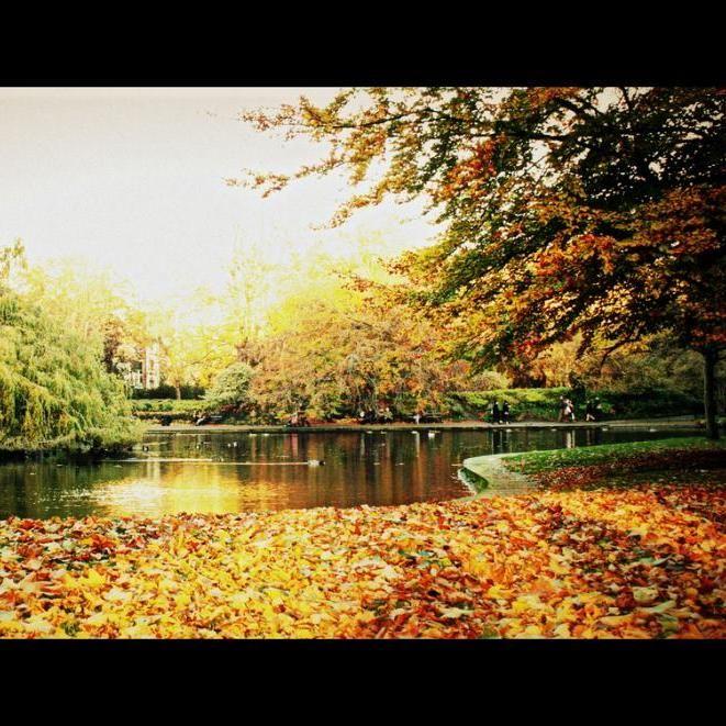 Travel Scenery: Gorgeous Scenery Over St. Stephen's Green In #Dublin