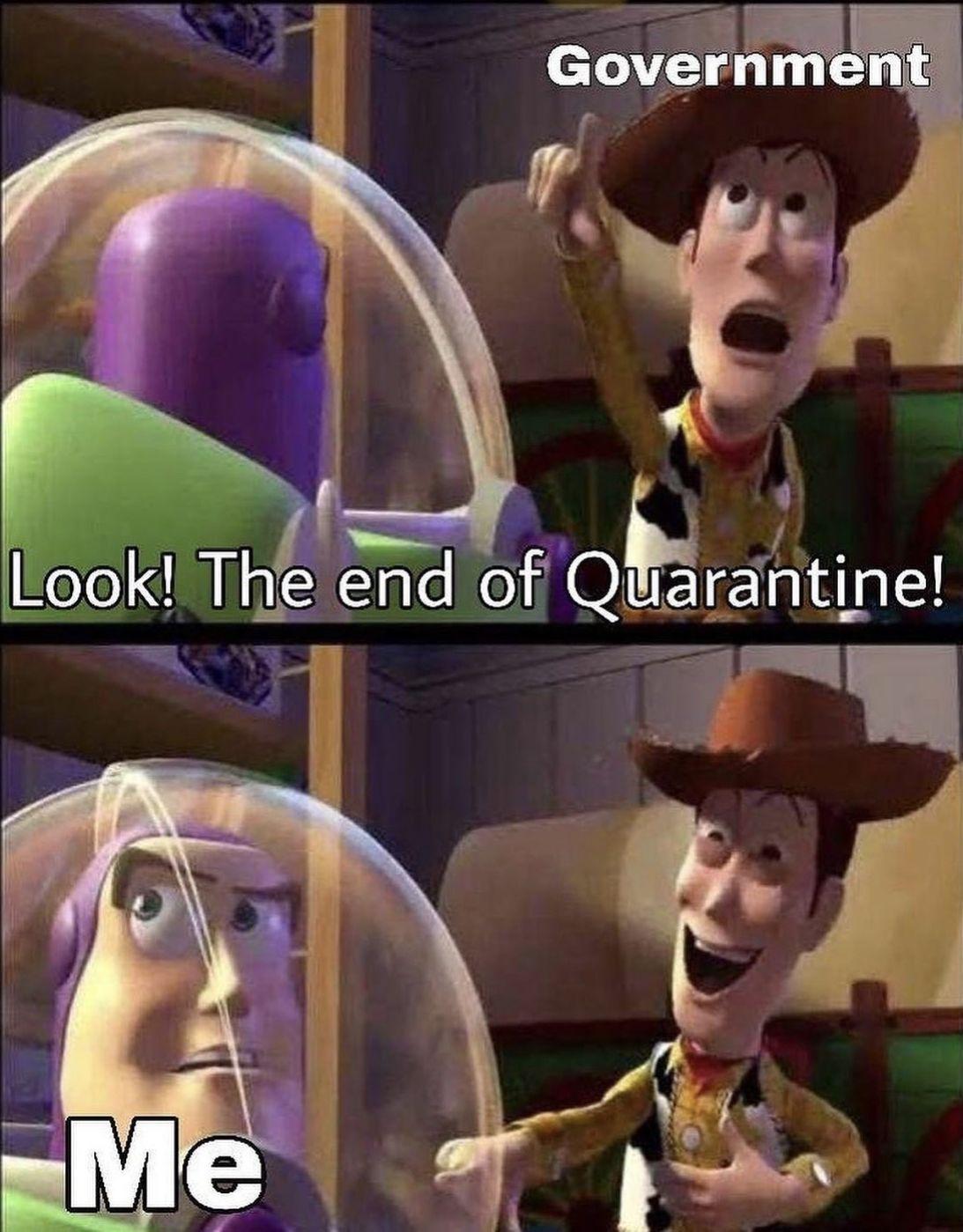 Quarantinelife Socialdistancing Whenwillitend Toystorymeme Asuna Sao Memes Funny