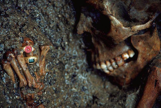 The skeletons of Herculaneum   Herculaneum Tour Guide