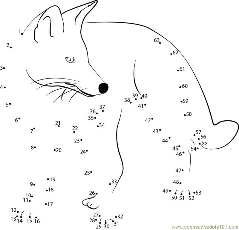 Angry Fox dot to dot printable worksheet Connect The