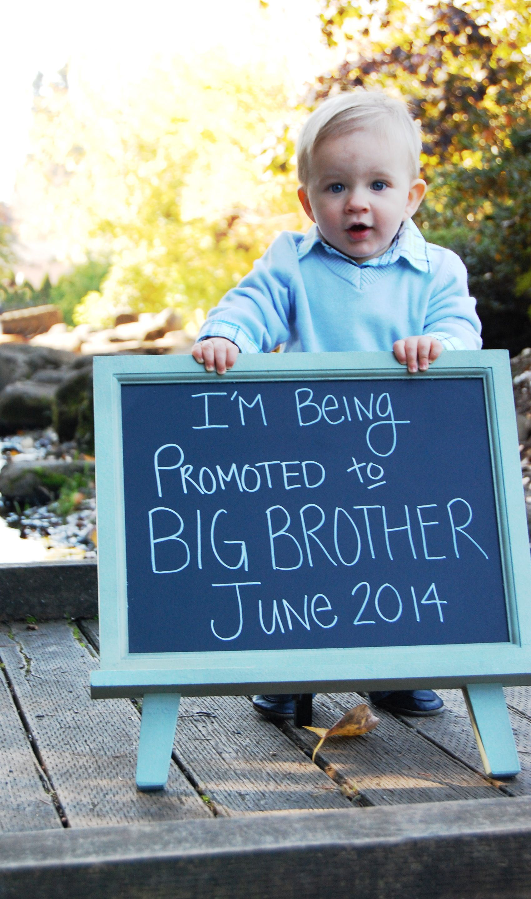 Repinned: Pregnancy Announcement Picture | Baby 2 announcement