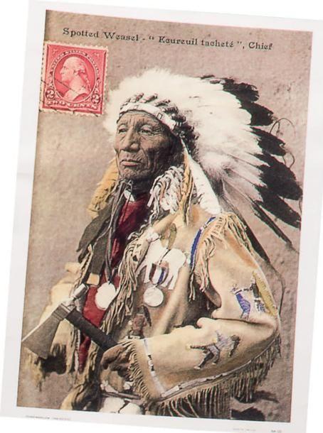 chef indien sioux Spotted Weasel ou Belette-Tachetée