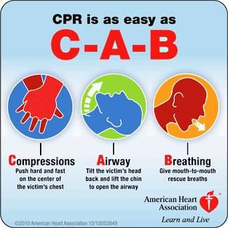Pin By Treena Manion On Nursing Information Cpr Training American Heart Association First Aid Cpr