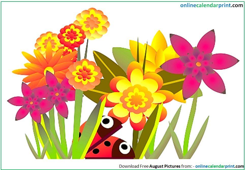 August Pictures Clip Art   Flower wallpaper, Flower ...