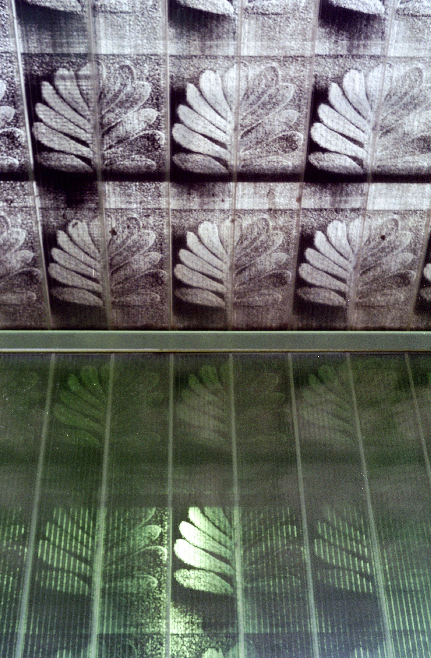 Motif design printed on translucent polycarbonate panels taken from photography of Karl Blossfeldt of the 1920s.  Designed by Herzog & de Meuron and featured on their Ricola Europe SA Factory building in Mulhouse-Brunstatt, France.  Creates a beautiful effect!
