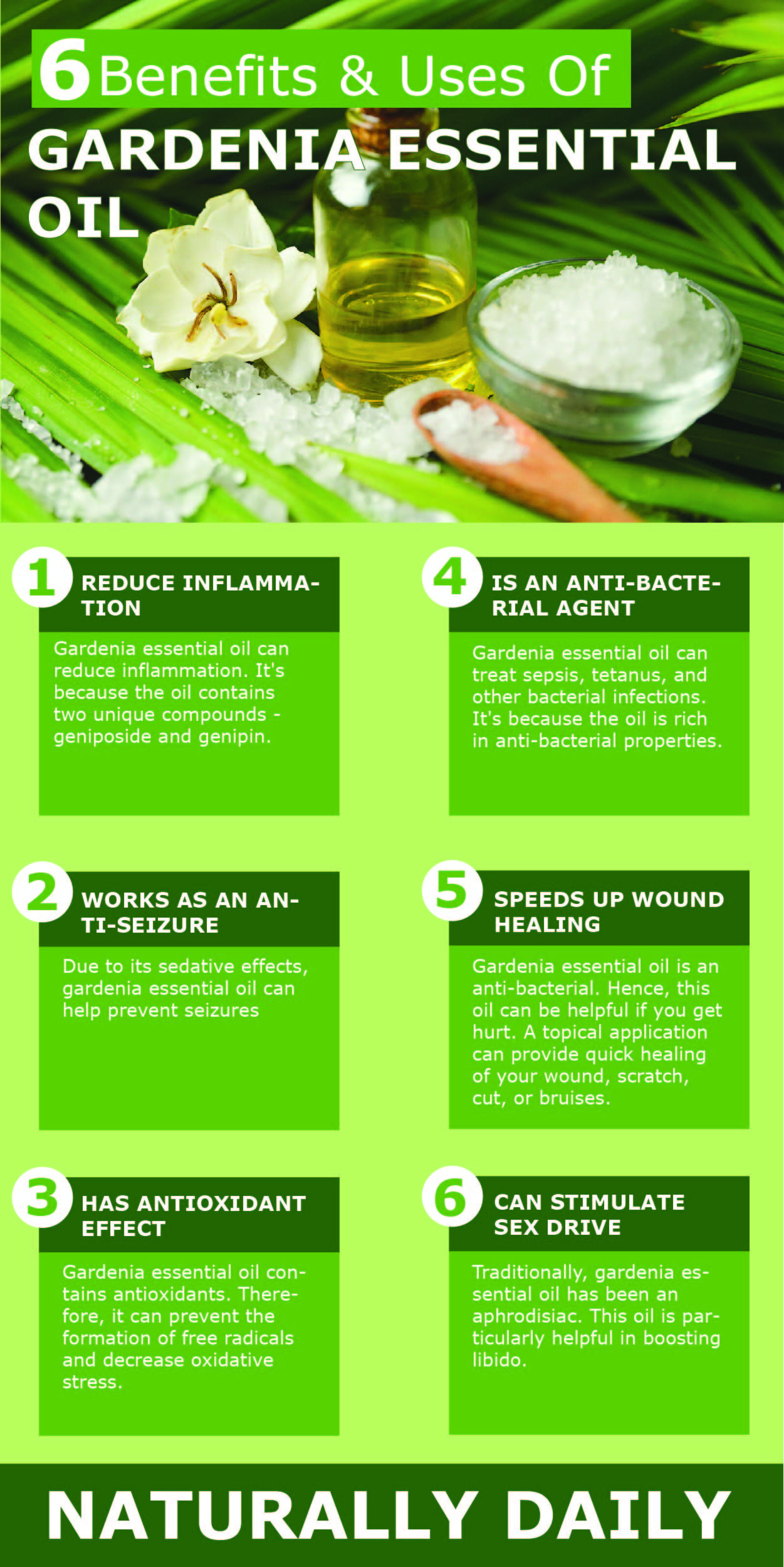 6 Benefits And Uses Of Gardenia Essential Oil Gardenia Essential Oil Gardenia Essential Oils