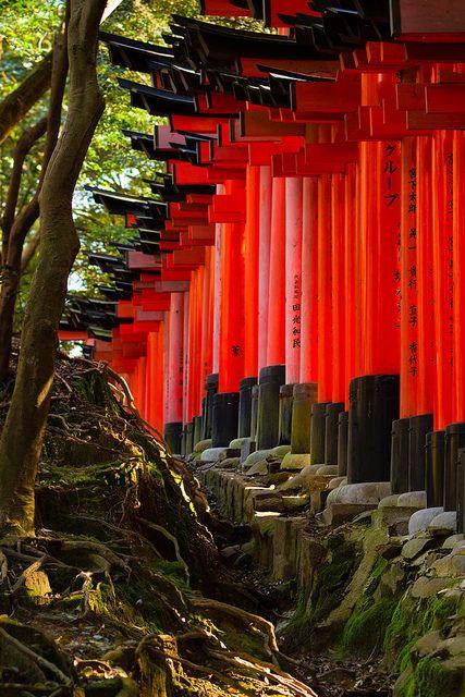 Kyoto Japan Inari Taisha Shrine Statues Of Menacing Kitsune Foxes Said To Have The Magic Power To Take Possession Of Human Spirits Alternate With Torii