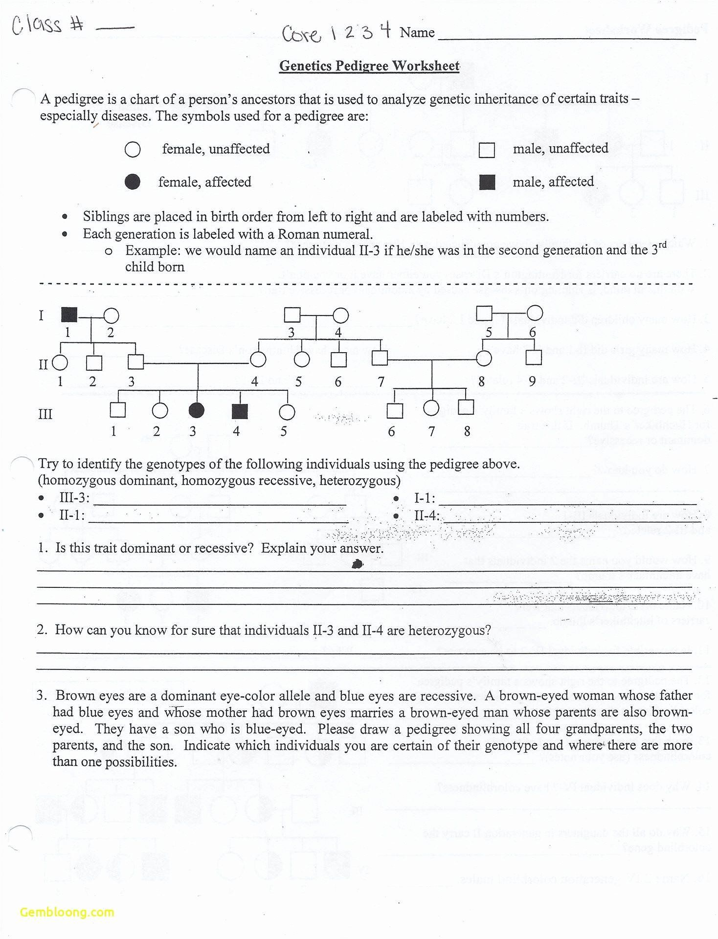 Mendelian Worksheet Answer Key Best Of Mendelian