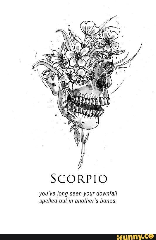 Zodiac Tumblr Skulls Aesthetic Scorpio Zodiac Pinterest