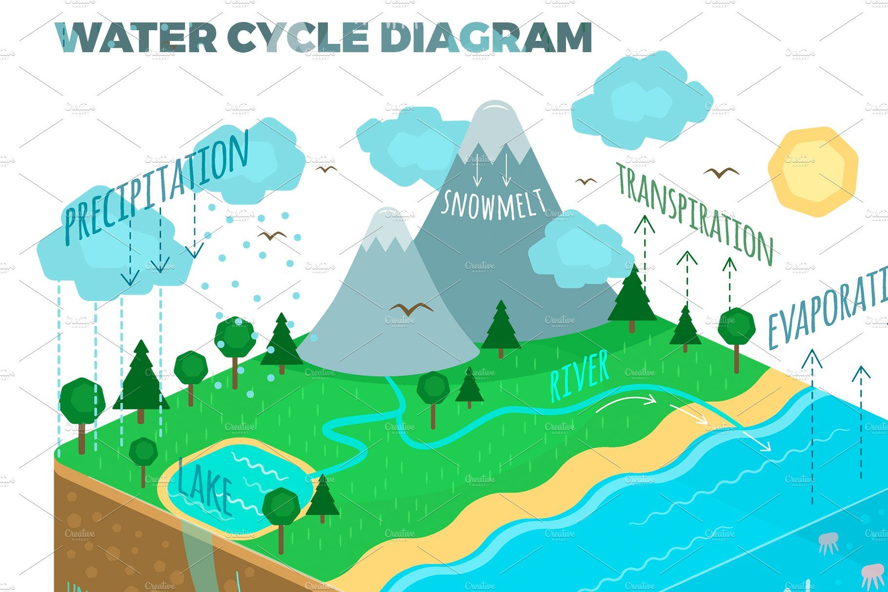 Water Cycle Diagram By Natalka Dmitrova On Creativemarket Water Cycle Diagram How To Draw Hands Hand Drawn Vector Illustrations