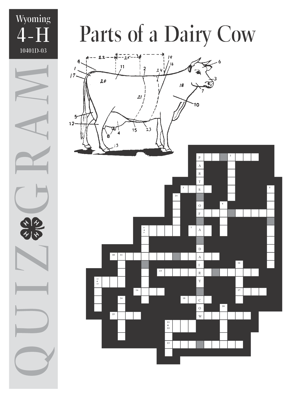 Parts Of A Dairy Cow Crossword Puzzle