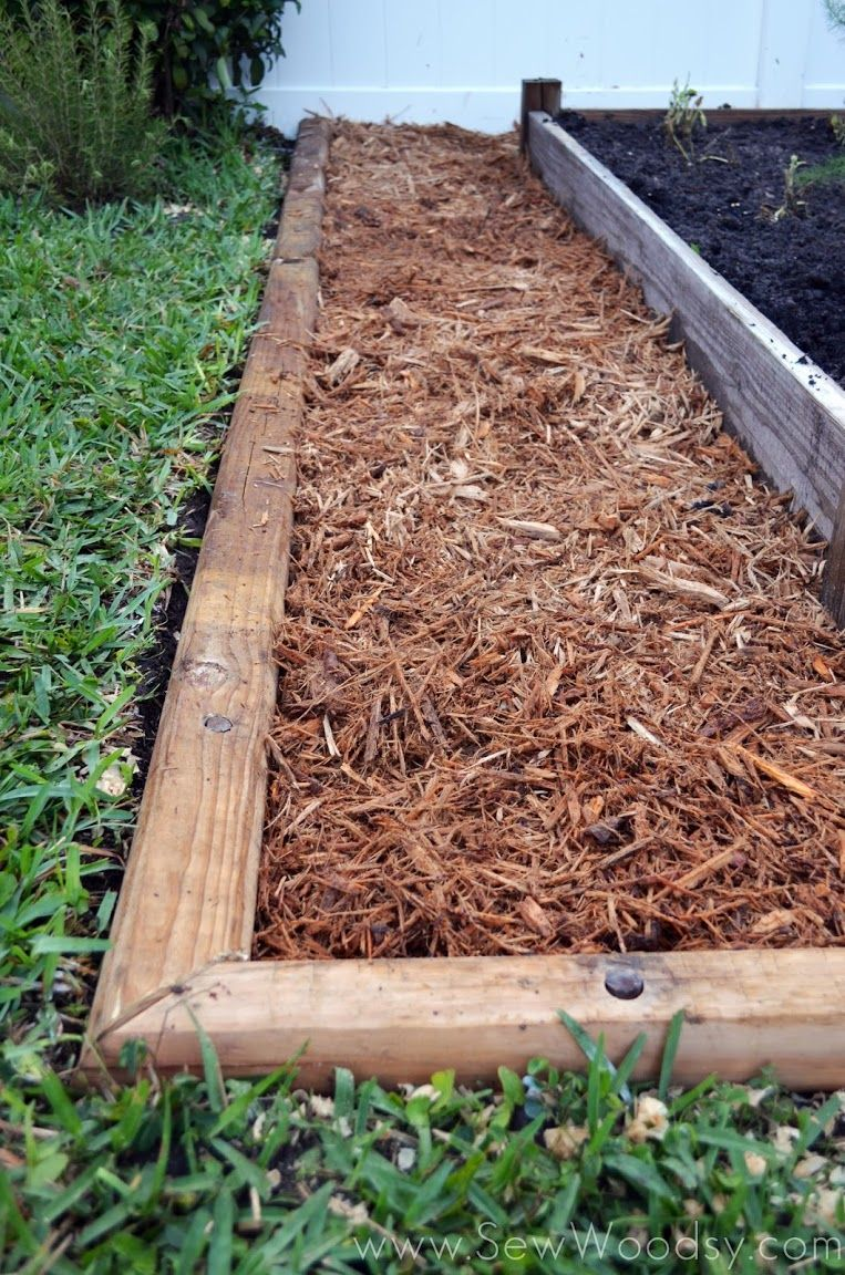 How to Build a Timber Garden Border + Vegetable Garden