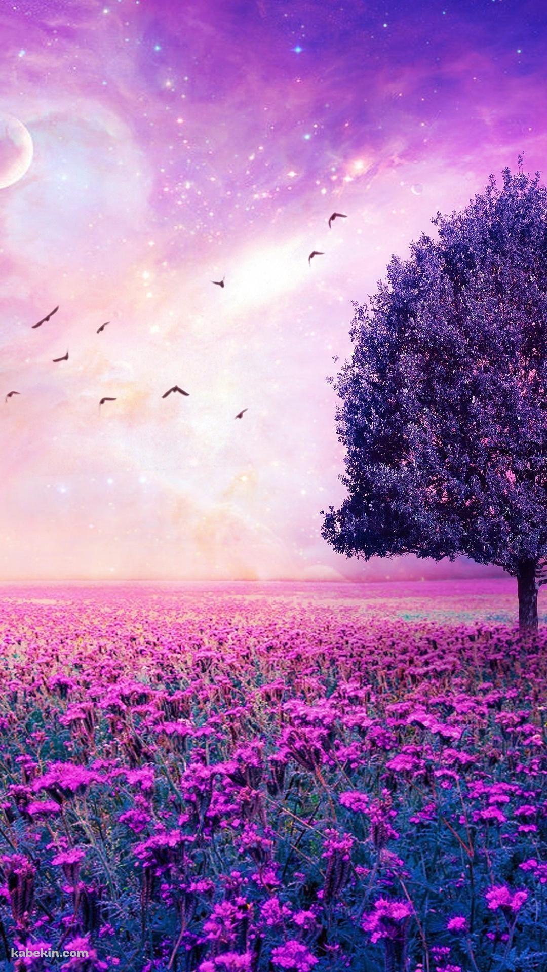 Purple flower garden Nature wallpaper, Beautiful