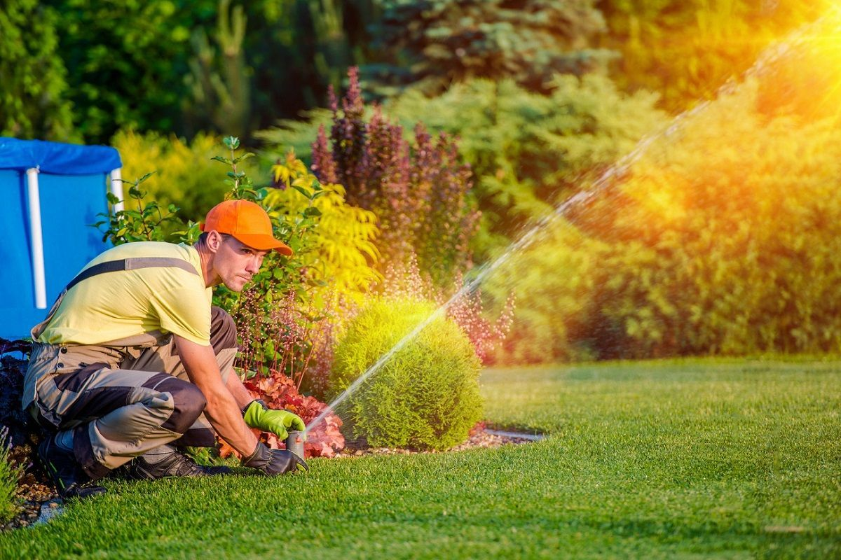 Best Lawn Sprinklers Best Lawn Sprinkler Lawn Sprinklers Landscaping Company