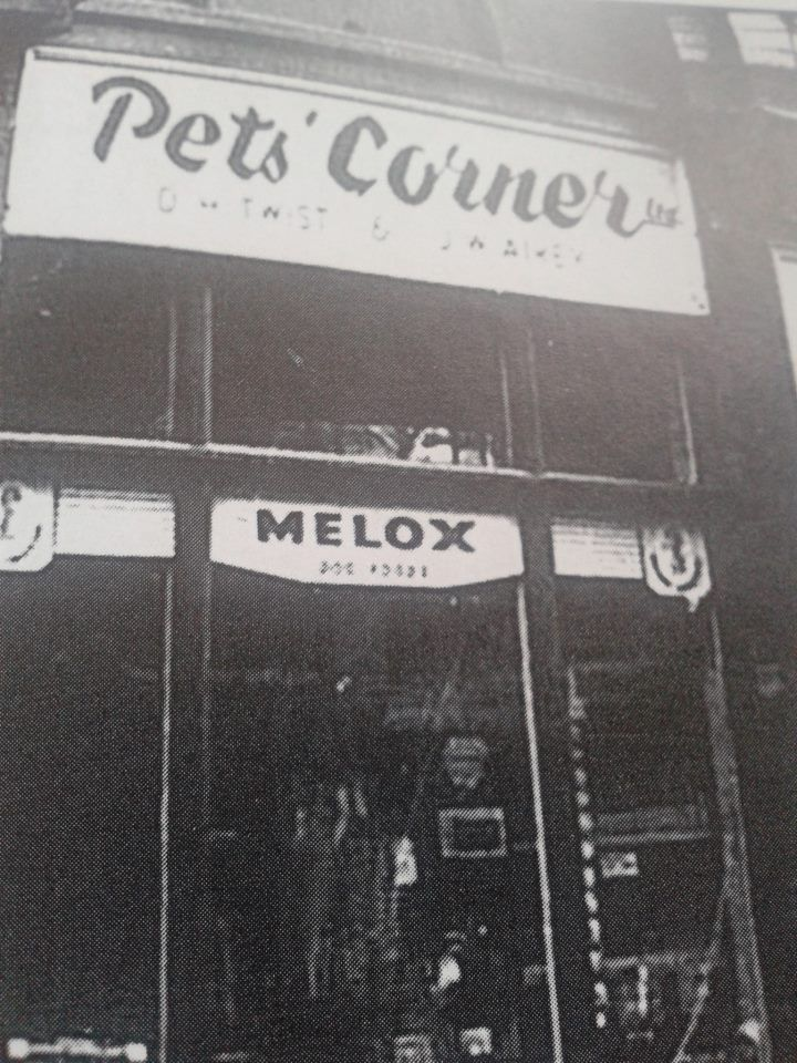 Pet S Corner Mardol Shrewsbury I Spent Many An Hour In Here As A Teenager Pretending I Wanted To Buy A Kitten So I Could Buy A Kitten Pet Corner Shrewsbury