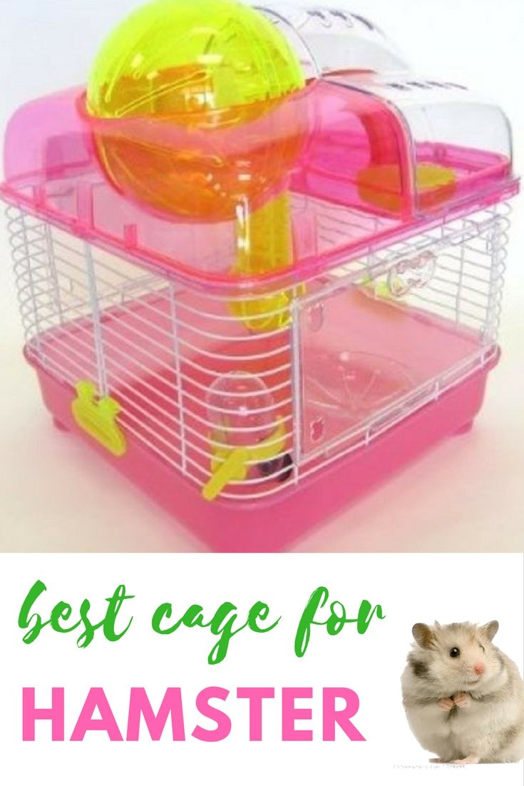 Best Hamster Cage Yml H1010 Clear Plastic Dwarf Hamster Mice Cage With Ball On Top Pink H1010pk Mouse Cage Hamster Cage Dwarf Hamster