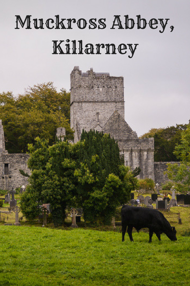 Muckross Abbey is an abandoned medieval monastery that is free to visit. A visit to Muckross Abbey in Killarney on the Ring of Kerry lets me think about time, and how differently we may experience it. #monastery #ireland #travelstory (scheduled via http://www.tailwindapp.com?utm_source=pinterest&utm_medium=twpin)