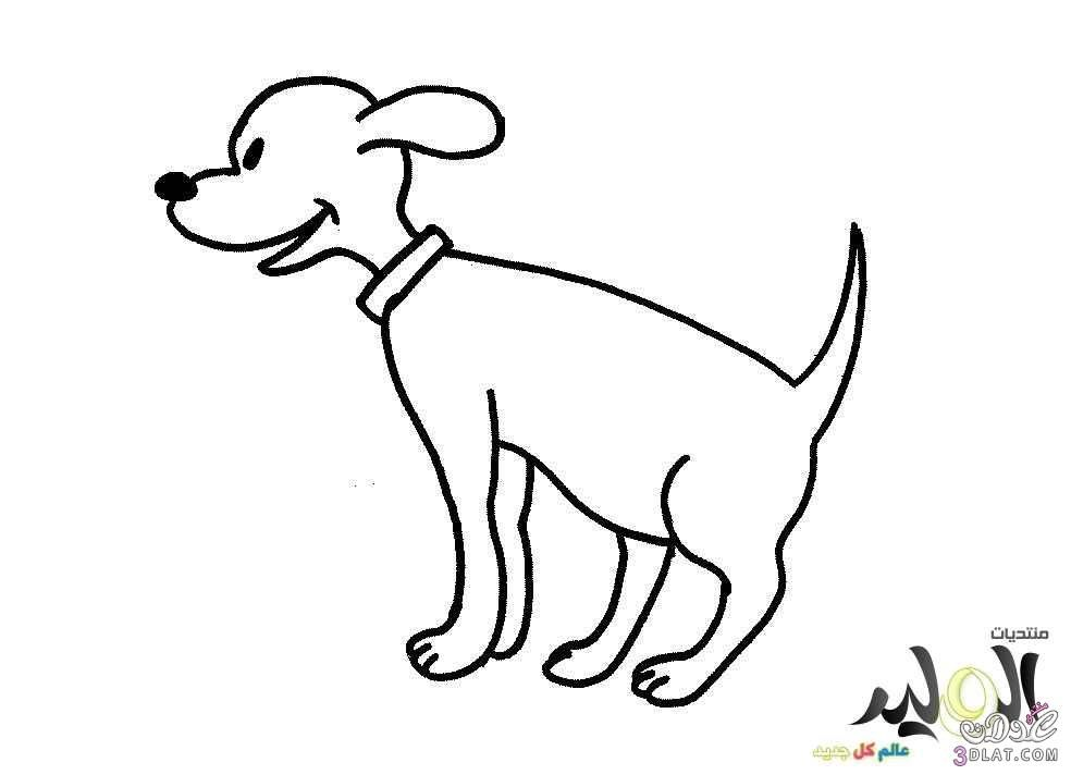 رسومات حيوانات للتلوين رسومات حيوانات تلوين رسومات حيوانات للأطفال رسومات للاطف Moose Art Painting Animals