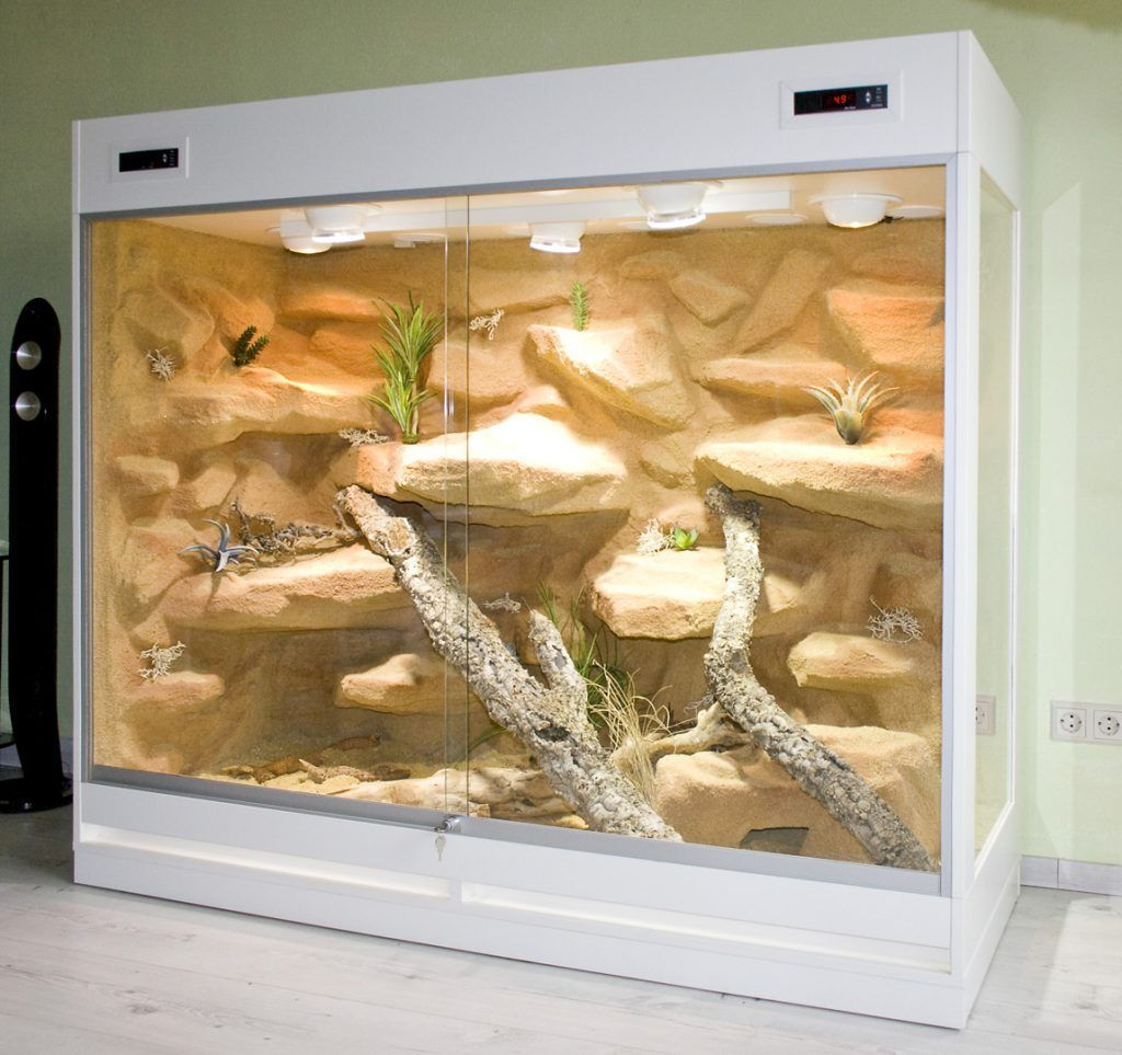 Terrarium Reptile Habitat 8