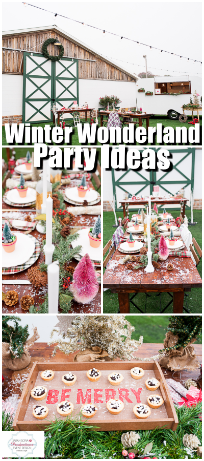 Photo of Winter Wonderland Party Reveal