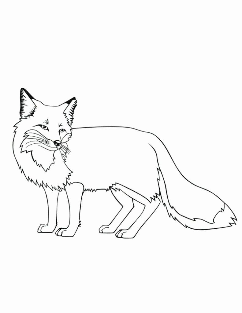 Arctic Fox Coloring Page Best Of Free Printable Fox Coloring Pages For Kids Fox Coloring Page Horse Coloring Pages Fox Printable