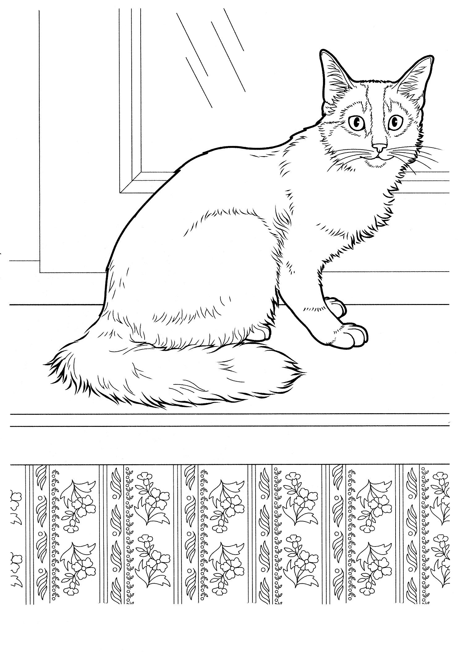 cat_11 Cats coloring pages for teens and adults ...