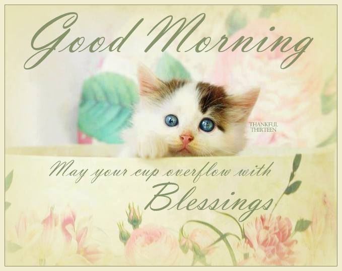 Good Morning Sister Have A Nice Wednesday