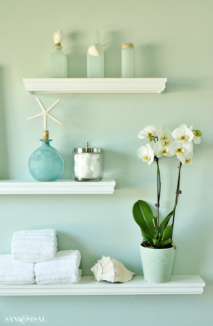 White Orchids - Orchids are actually EASY to grow & are so rewarding with blooms that can last for months! Once you read these easy tips, How to Grow Orchids - a beginner's guide, you will be hooked on orchids forever!