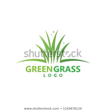 grass logo vector vector logo logos landscaping logo pinterest