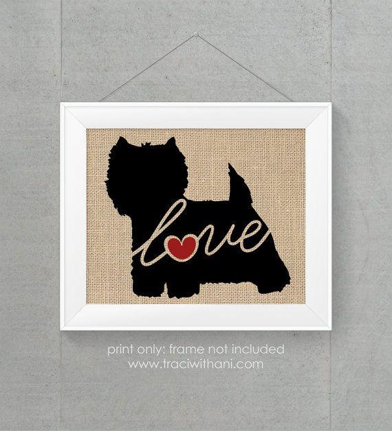 Westie / West Highland Terrier