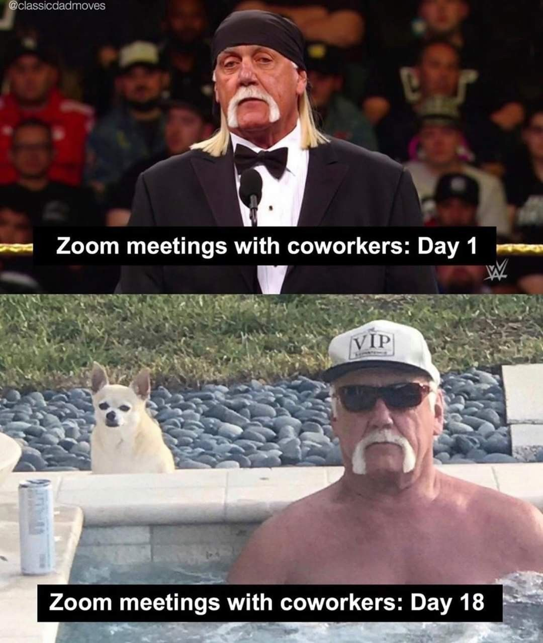 Zoom Meeting With Coworkers Day 1 In 2020 Funny Pictures Funny Memes Memes