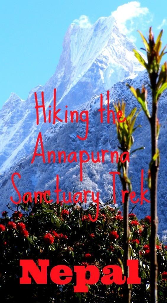 Trekking In Nepal: Annapurna Base Camp Trek