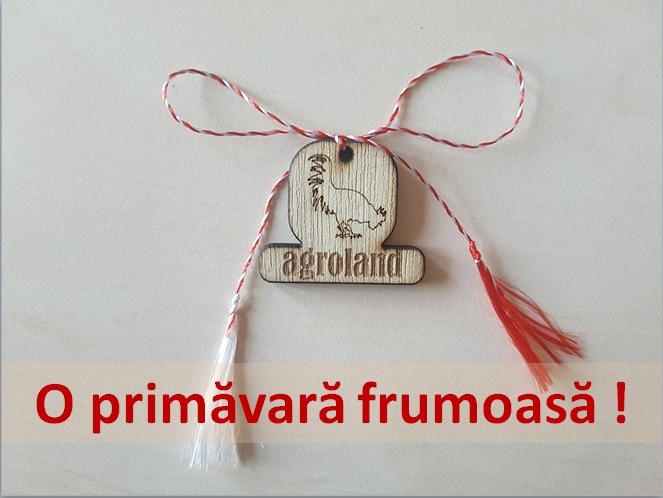 O primavara insorita va doreste echipa #Agroland! :) #Martisor #1martie #primavara
