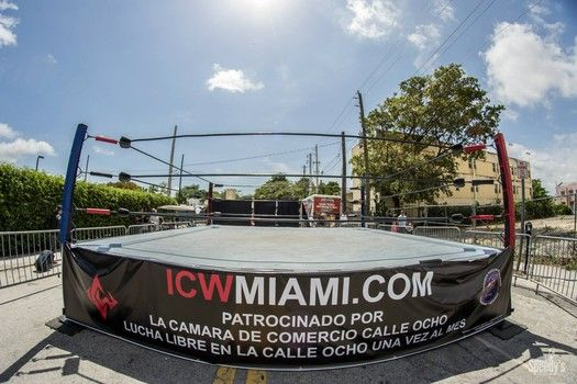 ICW At Calle Ocho - Carnaval 2015-slide1