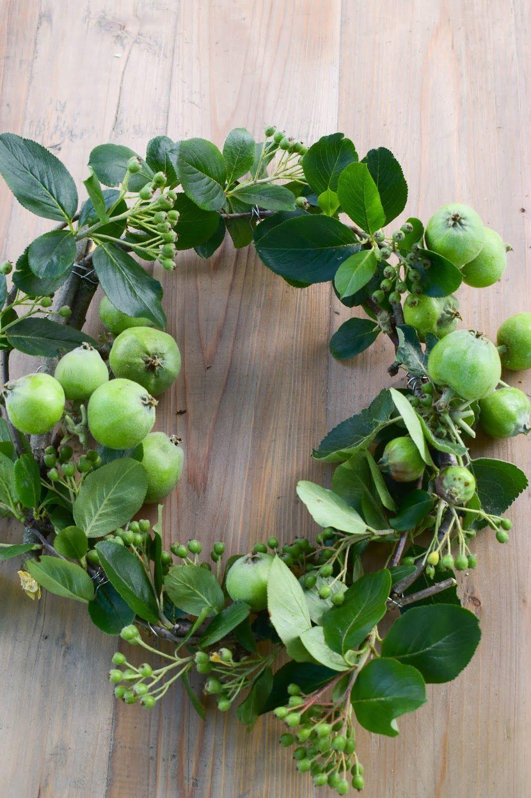 kranz aus pfeln diy fruechte selbermachen und binden schneeball wreath apple sommerkranz. Black Bedroom Furniture Sets. Home Design Ideas