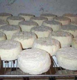 Brânză je rumunski naziv za sir. Slavu su stekli brânză de vaci (od kravljeg sira), topljeni brânză topită, urdă – čiji proces izrade je sličan italijanskoj riccoti pa poznati caşcaval – polutvrdi rumunski sir, telemea – sličan kao feta.