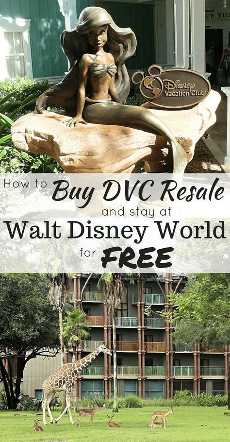 How Buying DVC Resale Can Save You Thousands at Disney ...