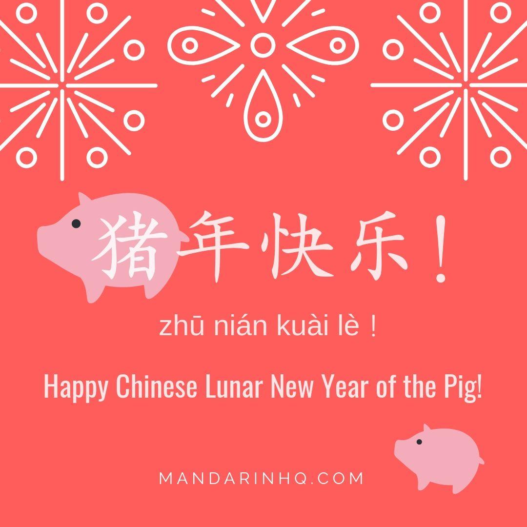 猪年快乐!Happy Chinese Lunar New Year of the Pig! https