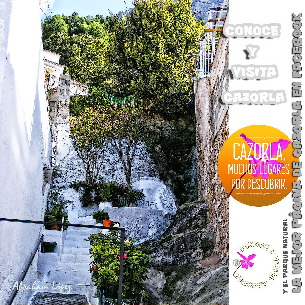 La cal, colaborando con el cielo, que hizo una risa azul de Andalucía, es en Cazorla arrullo, brisa y vuelo y optimismo ideal de claro día. Fernando de los Ríos y de Guzmán