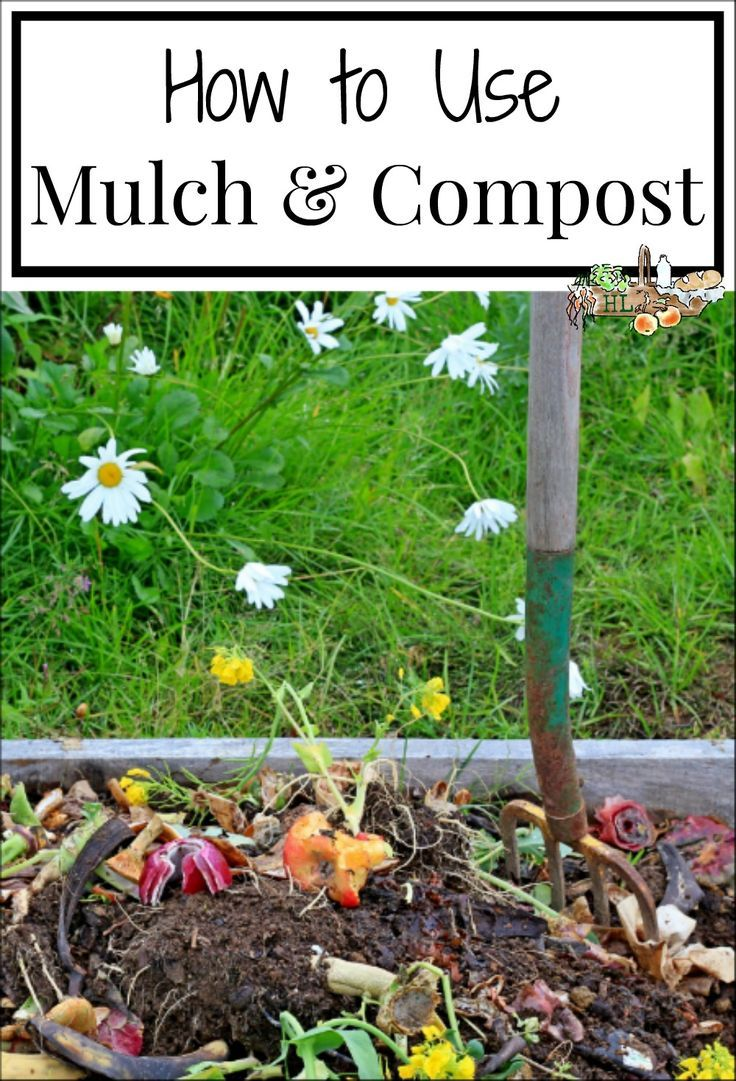 DIY Mulch  Compost Learn what wood chips mulch and compost are used for in the garden each year l Learn how to DIY making your own mulch and compost to save money and fee...