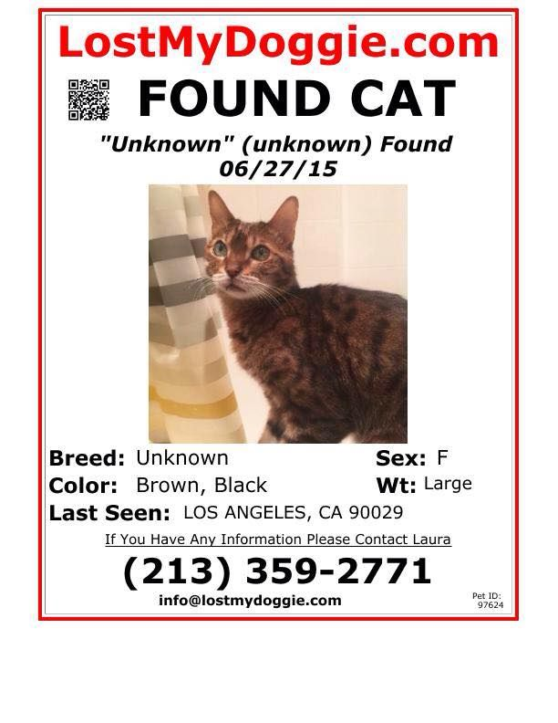 COMMUNITY POSTING. please share. Thanks! Found cat