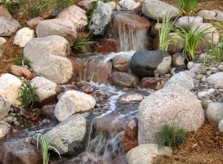 Lovely Water Garden Design   Landscape Nl.com Green For Life