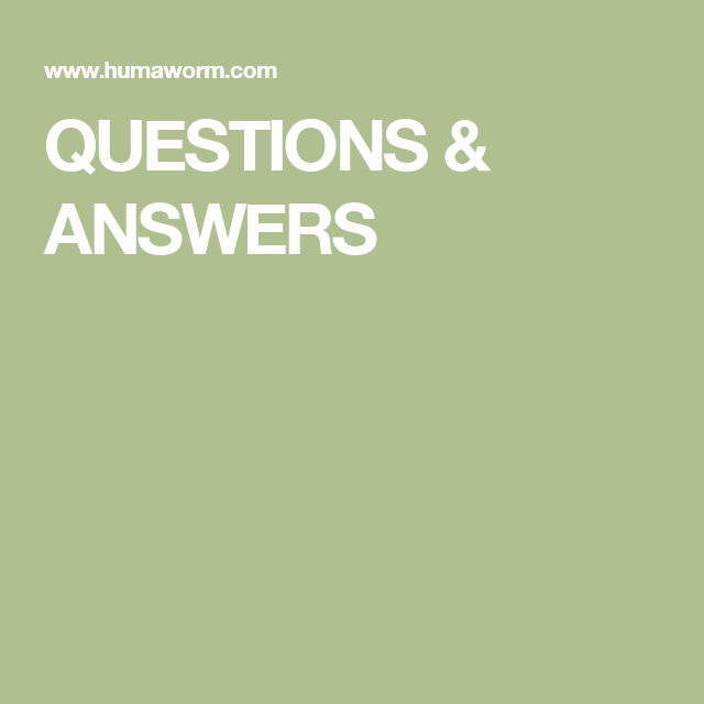 QUESTIONS & ANSWERS | This or that questions, Quiz questions and answers, Christmas quiz