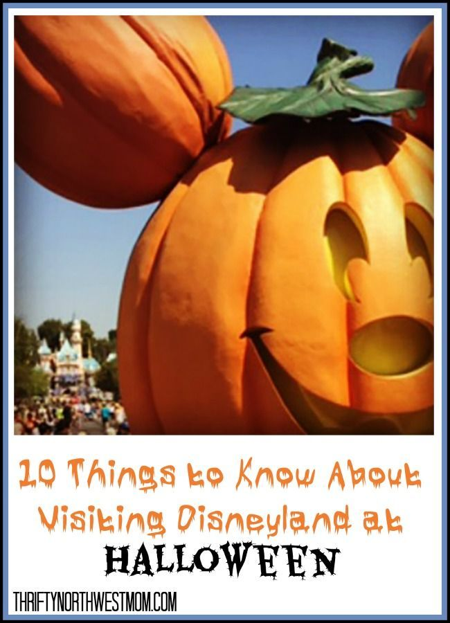 Disneyland Halloween Tips 10 Things to Know About Halloween at